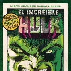 Cómics: EL INCREIBLE HULK-COLECCION COMPLETA-DENTRO DEL PANTEON-PETER DAVID Y VARIOS CAJA 126. Lote 20929644