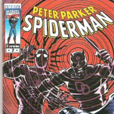 Cómics: MARVEL EXCELSIOR SPIDERMAN VOL 1 NUM 7. Lote 14152884