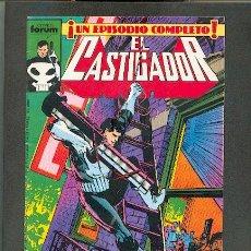 Cómics: LOTE DEL CASTIGADOR,ED.FORUM. Lote 24945964