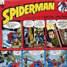 Cómics: SPIDERMAN (LOTE DE 20 CUADERNILLOS CON LAS DAILY-STRIP DE STAN LEE Y JOHN ROMITA). Lote 14650770