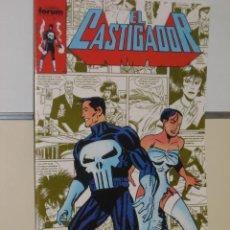 Cómics: EL CASTIGADOR Nº 29 FORUM. Lote 19038105