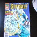 Cómics: BLACKWULF Nº 4 DE 9 FORUM 1994 ...........C20. Lote 27842998