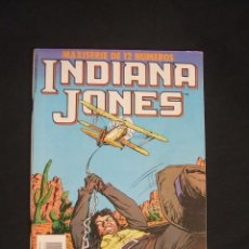 Comics: INDIANA JONES - MAXISERIE DE 12 NUMEROS - Nº 5 - FORUM - . Lote 34211625
