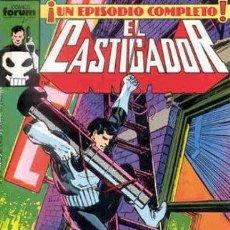 Cómics: EL CASTIGADOR VOL. 1. LOTE DE 17 Nº (11-13-14-16-19-20-21-22-23-24-25-26-27-28-29-31-33). Lote 48630600
