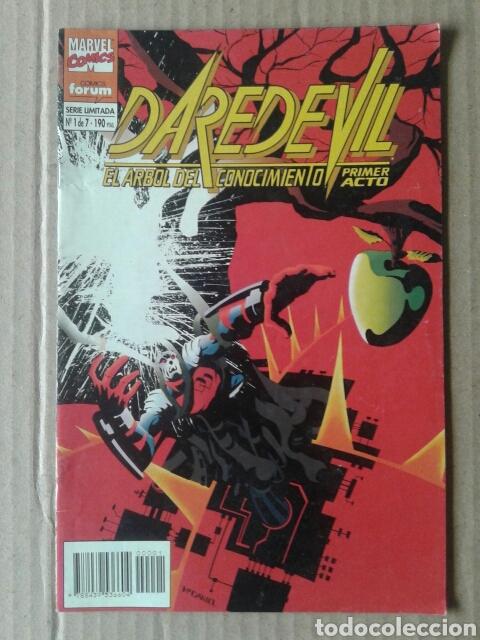 DAREDEVIL: EL ÁRBOL DEL CONOCIMIENTO. N° 1 (DE 7), SERIE LIMITADA DE COMICS FORUM. (Tebeos y Comics - Forum - Daredevil)