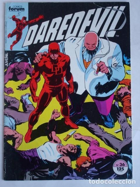 DAREDEVIL VOL. 1 Nº 36 (FORUM) MARVEL (Tebeos y Comics - Forum - Daredevil)