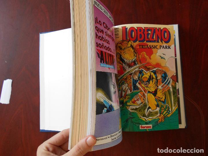 Cómics: LOBEZNO - VOLUMEN 1 - COLECCION COMPLETA - 78 NUMEROS - FORUM - LEER DESCRIPCION (6N) - Foto 13 - 95998515