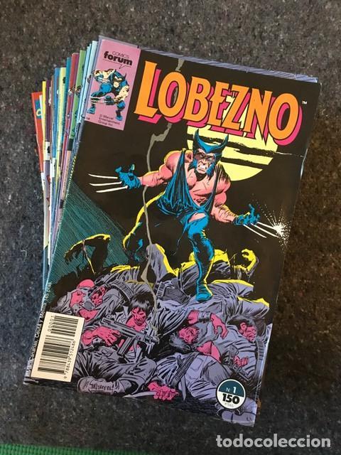 LOTE LOBEZNO VOLÚMEN 1 - NºS 37 45 46 - D2 (Tebeos y Comics - Forum - X-Men)