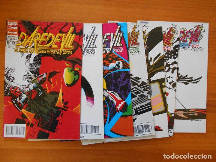 DAREDEVIL - EL ARBOL DEL CONOCIMIENTO - SERIE COMPLETA - NUMEROS 1 A 7 - FORUM (8J) (Tebeos y Comics - Forum - Daredevil)