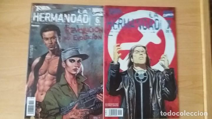 Cómics: X-Men La Hermandad. Forum. 2002. Completa y en perfecto estado. - Foto 4 - 121699871