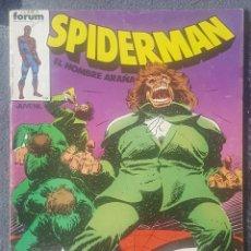 Cómics: SPIDERMAN VOL.1 #11 (FORUM, 1983). Lote 127681995
