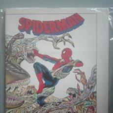 Cómics: SPIDERMAN HOOKY #. Lote 153981746