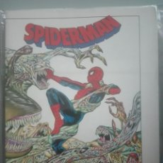 Cómics: SPIDERMAN HOOKY #. Lote 153981866