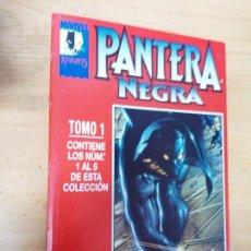 Comics: PANTERA NEGRA TOMO 1 Y 2 - Nº 1 AL 10 - ED. FORUM. Lote 159788798