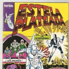Cómics: ESTELA PLATEADA - Nº 13 - VOL 1 - SILVER SURFER - ¡RESURRECCIÓN! - FORUM -. Lote 165484006