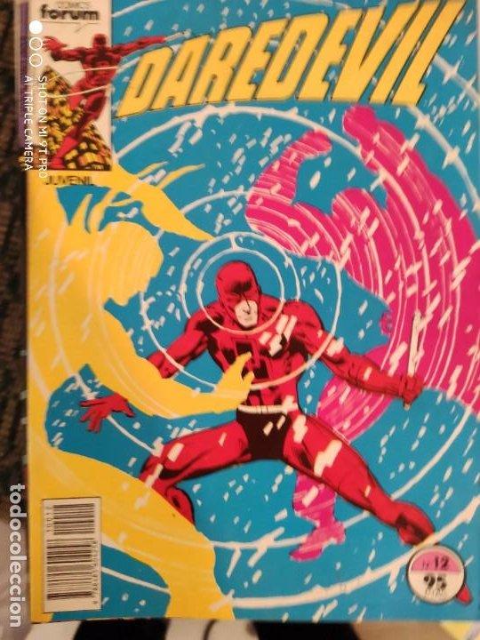 DAREDEVIL FORUN NUMERO 12 (Tebeos y Comics - Forum - Daredevil)