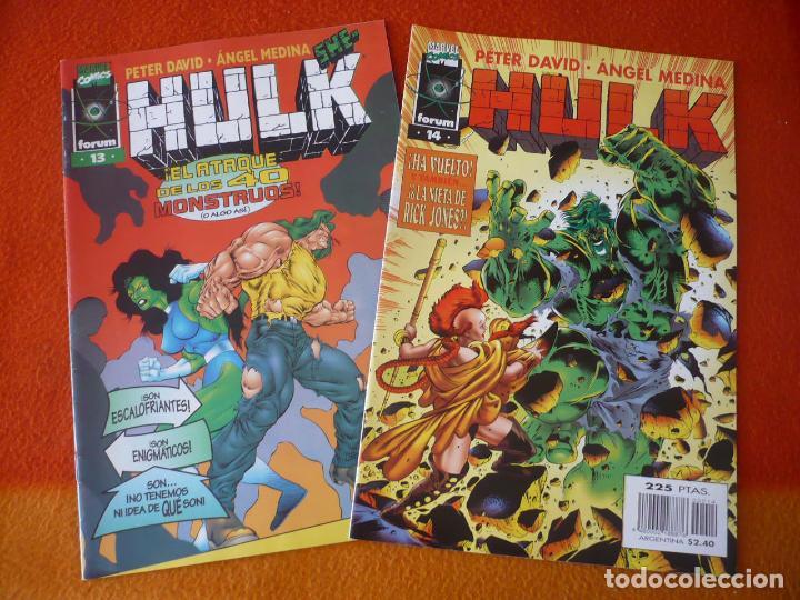 HULK VOL. 2 NºS 13 Y 14 ( PETER DAVID ANGEL MEDINA ) ¡BUEN ESTADO! FORUM MARVEL (Tebeos y Comics - Forum - Hulk)
