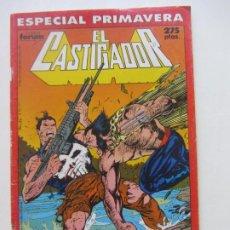Comics: EL CASTIGADOR ESPECIAL PRIMAVERA JIM LEE FORUM MUCHOS MAS A LA VENTA, MIRA TUS FALTAS C28X3. Lote 217480202