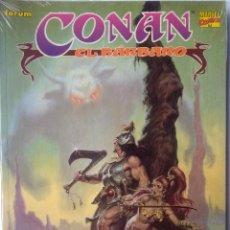 Comics: NOVELA GRAFICA 10 CONAN EL BARBARO-CONAN EL DESTRUCTOR. Lote 238427460