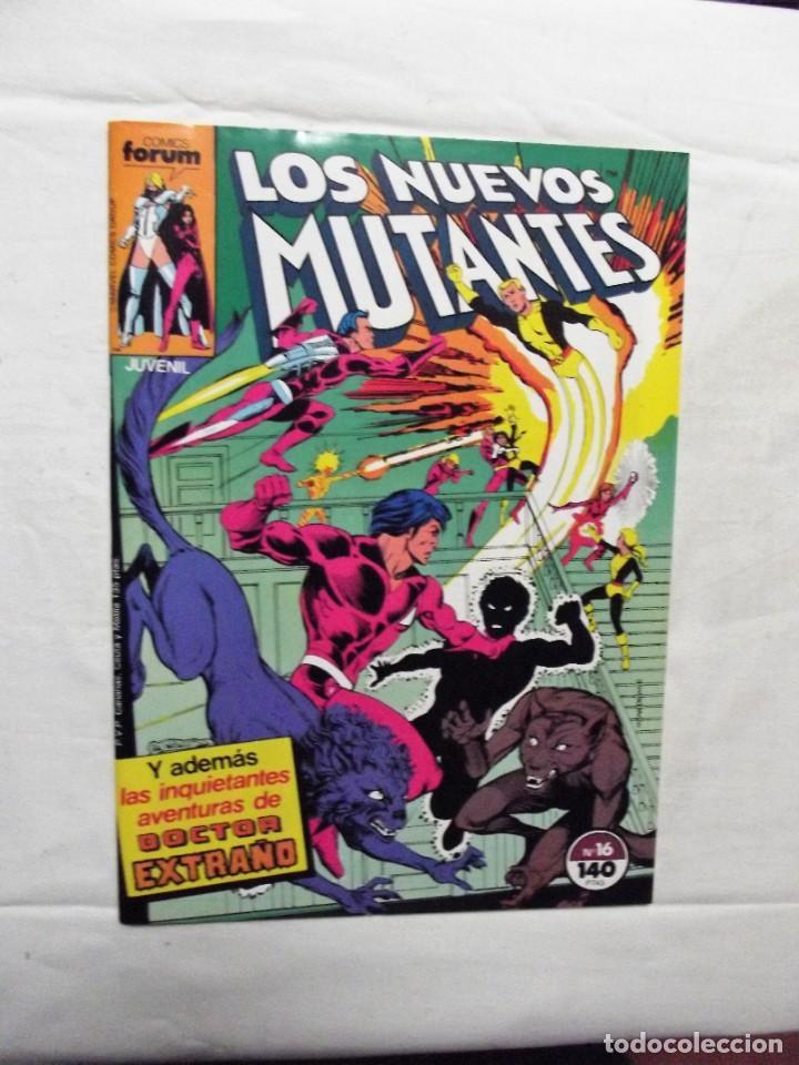 LOS NUEVOS MUTANTES Nº 16 COMICS FORUM (Tebeos y Comics - Forum - Nuevos Mutantes)