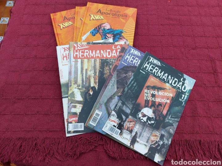 Cómics: X-MEN LA HERMANDAD - X-MEN LA ERA DE APOCALIPSIS/MUTANTES/LOBEZNO/MAGNETO/CICLOPE/BESTIA/COMIC FORUM - Foto 2 - 248607175