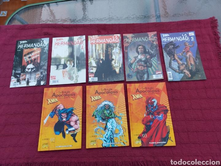 Cómics: X-MEN LA HERMANDAD - X-MEN LA ERA DE APOCALIPSIS/MUTANTES/LOBEZNO/MAGNETO/CICLOPE/BESTIA/COMIC FORUM - Foto 3 - 248607175