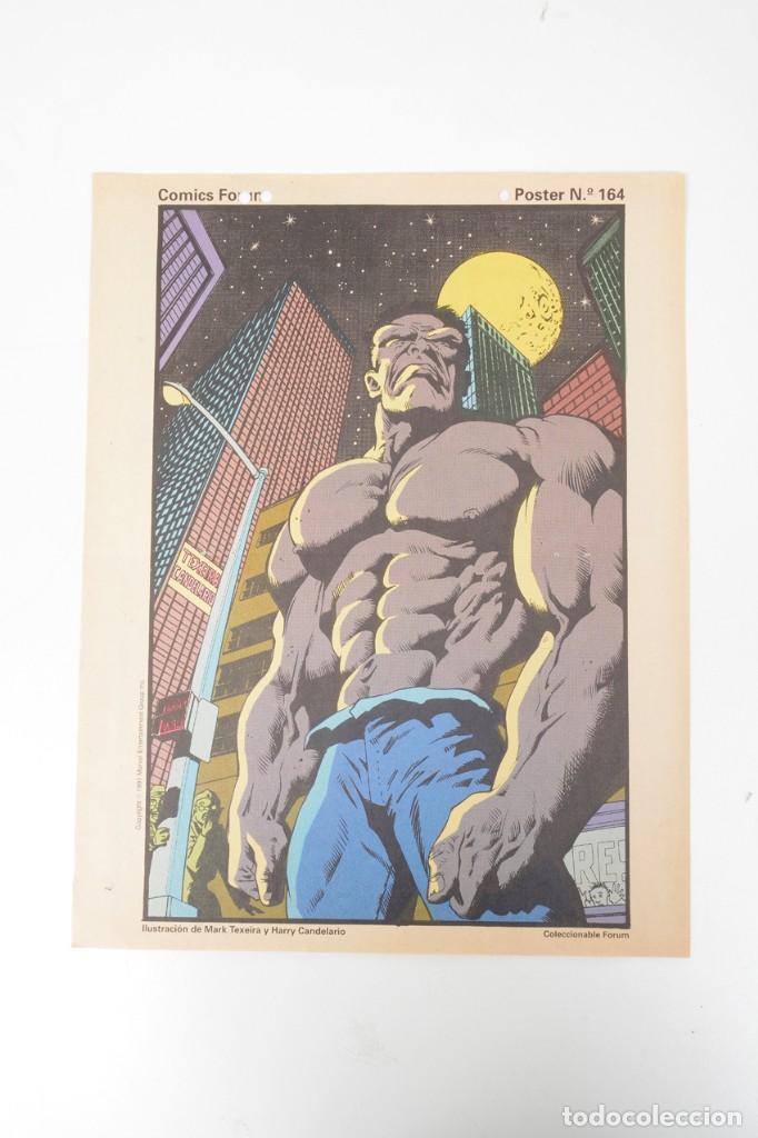 POSTER VINTAGE DE COLECCIONABLE FORUM 1991 HULK LA MASA MARVEL MARK TEXEIRA Y HARRY CANDELARIO (Tebeos y Comics - Forum - Hulk)