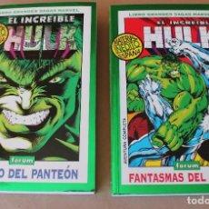 Cómics: GRANDES SAGAS MARVEL 2 12 – COMPLETA EL INCREÍBLE HULK - 1 DENTRO DEL PANTEÓN 2 FANTASMAS DEL PASADO. Lote 254184635