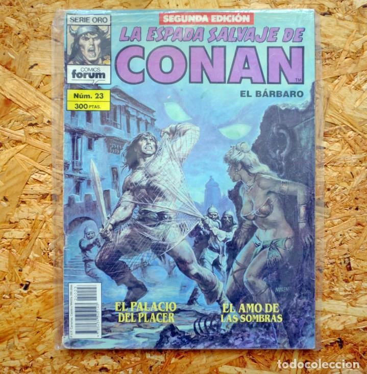 LA ESPADA SALVAJE DE CONAN EL BÁRBARO. SEGUNDA EDICIÓN. 23. COMICS FORUM (Tebeos y Comics - Forum - Conan)