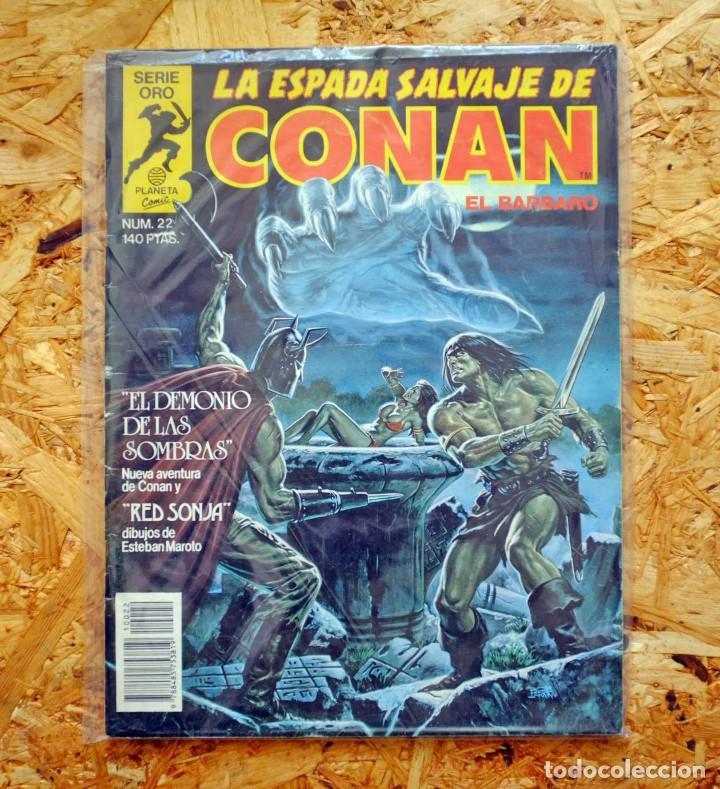 LA ESPADA SALVAJE DE CONAN EL BÁRBARO. 22. COMICS FORUM (Tebeos y Comics - Forum - Conan)