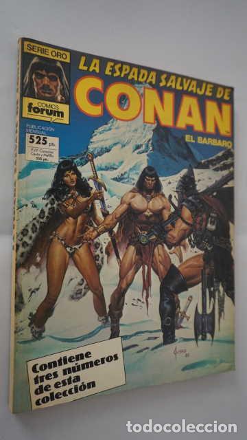 RETAPADO LA ESPADA SALVAJE DE CONAN EL BARBARO NUMEROS 59, 60 Y 61, SERIE ORO, COMICS FORUM (Tebeos y Comics - Forum - Retapados)