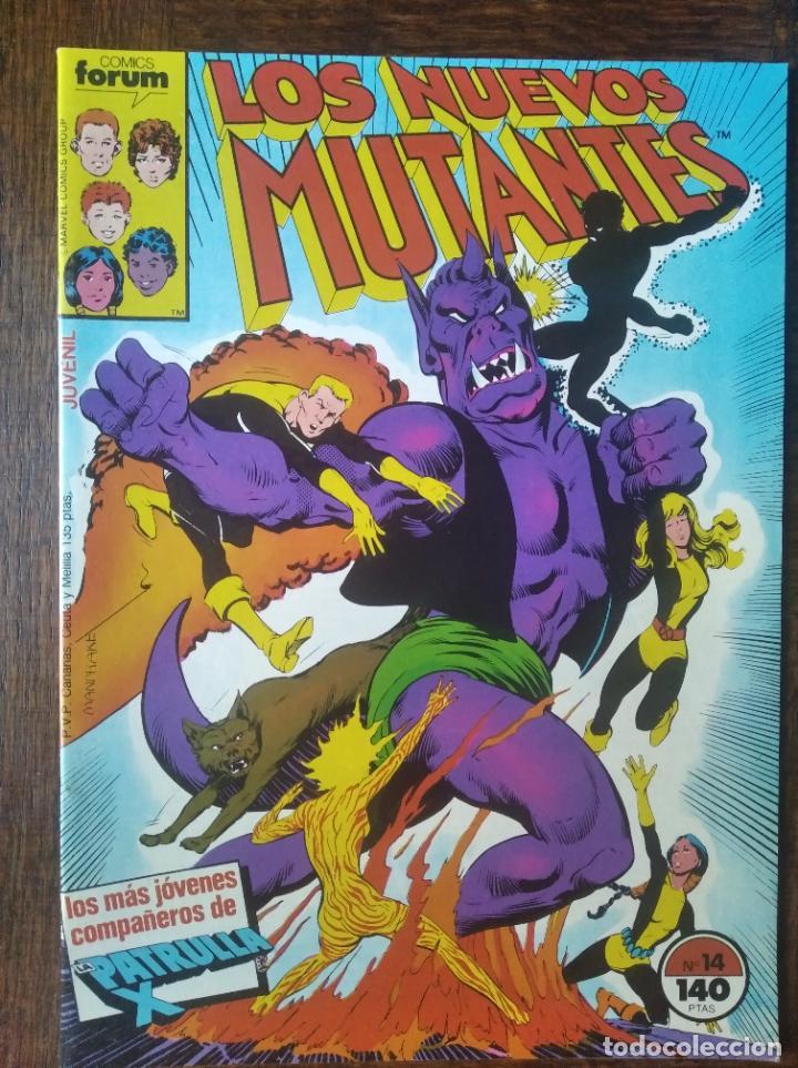 LOS NUEVOS MUTANTES V.1 Nº 14 - FORUM MARVEL COMICS - (Tebeos y Comics - Forum - Nuevos Mutantes)