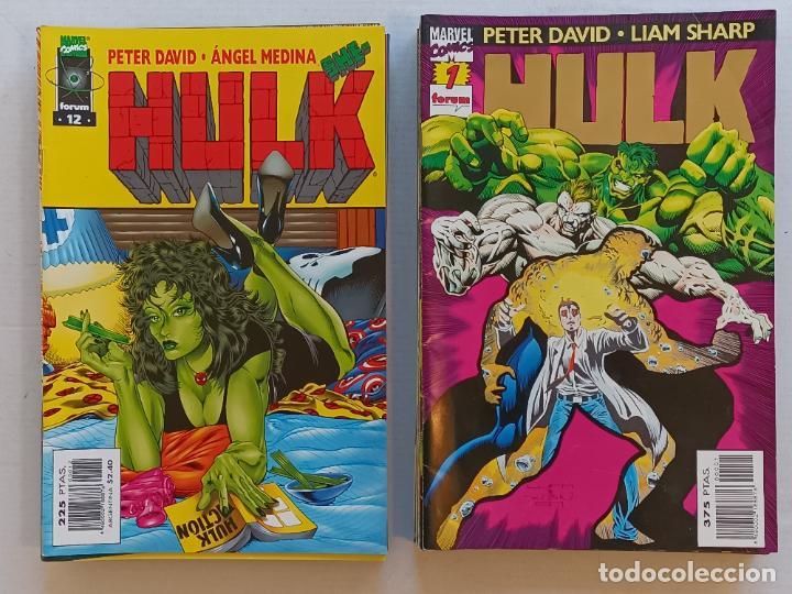 HULK PETER DAVID LIAM SHARP FORUM (Tebeos y Comics - Forum - Hulk)