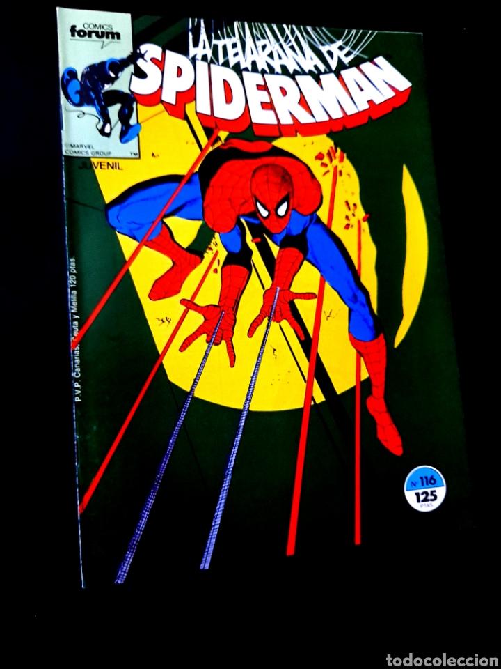MUY BUEN ESTADO SPIDERMAN 116 COMICS FORUM (Tebeos y Comics - Forum - Spiderman)