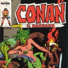Cómics: CONAN EL BÁRBARO-FORUM- Nº 44 -EL SECRETO DE LA BRUJA-1984-GRAN GIL KANE-BUENO-DIFÍCIL-LEA-5588. Lote 289349698