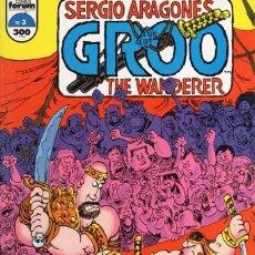 Cómics: GROO THE WANDERER Nº 3 - FORUM - MUY BUEN ESTADO - SUB01M. Lote 293324663