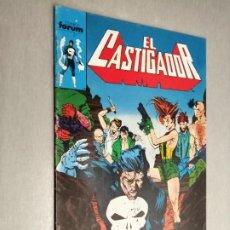 Cómics: EL CASTIGADOR Nº 14 / FORUM. Lote 295703613