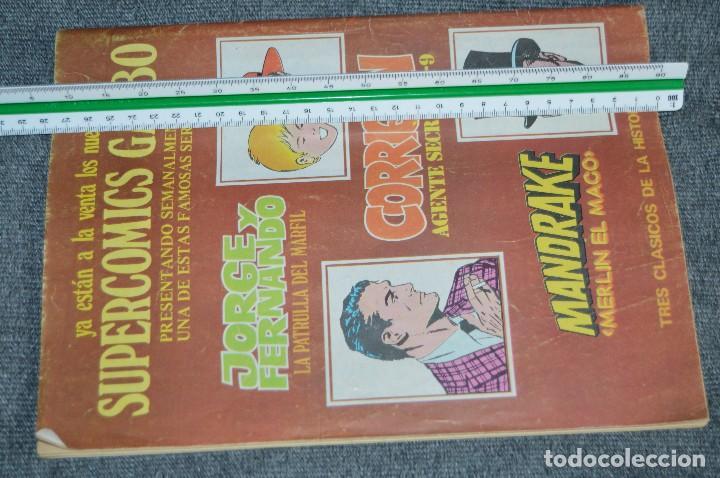 Cómics: LOTE 3 TEBEO / COMIC - VAMPIRELLA 10, 25 Y 29 - REVISA PARA ADULTOS - AÑOS 70 - VINTAGE - HAZ OFERTA - Foto 8 - 107525347