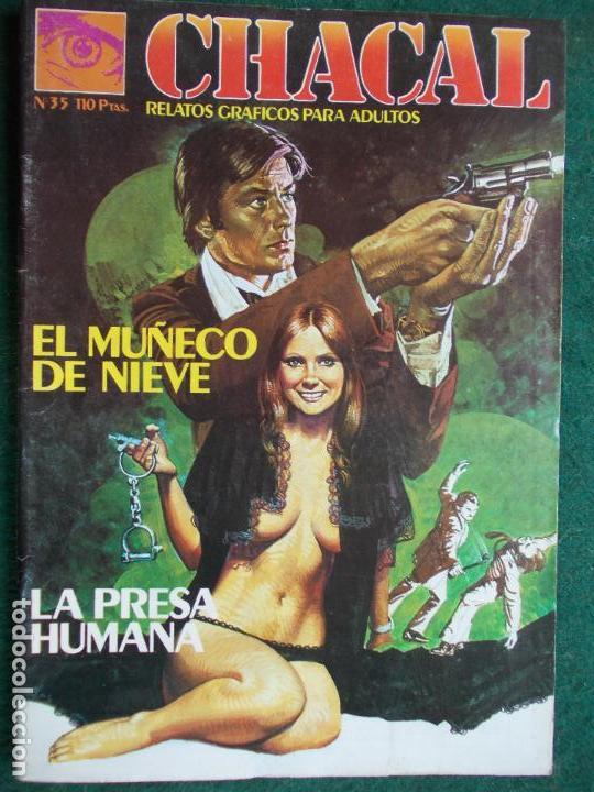 CHACAL Nº 35 (Tebeos y Comics - Glénat - Serie Erótica)