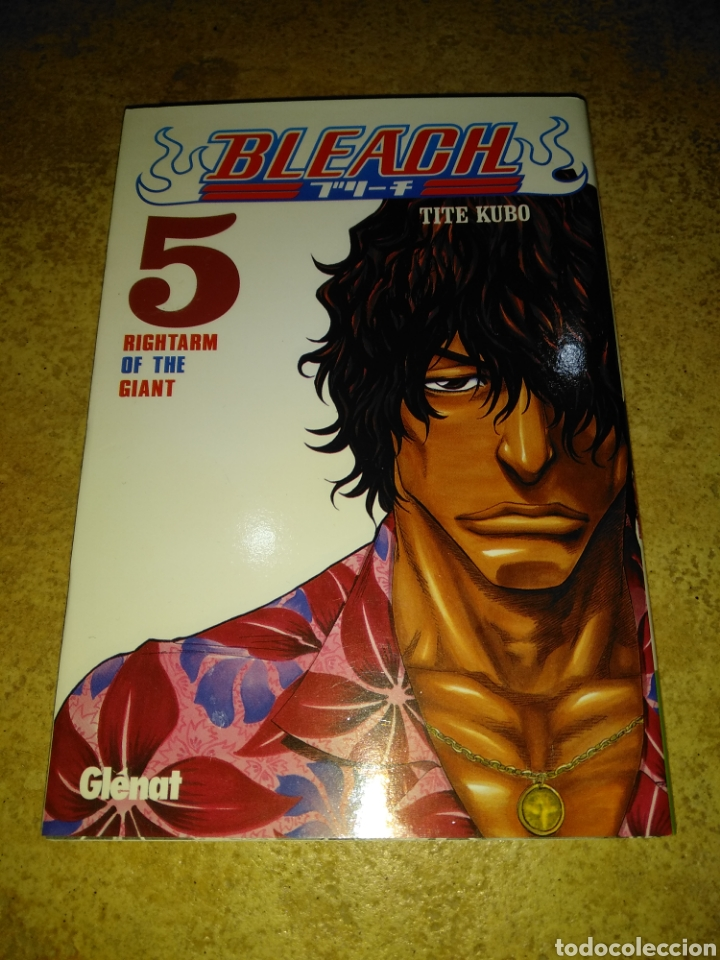 BLEACH 5 (Tebeos y Comics - Glénat - Serie Erótica)