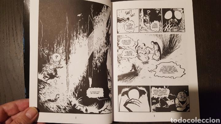 Cómics: Comic - Pinocho blues - Carlos Bribián - Glenat - 2010 - Con sketch / dibujo del autor - Foto 6 - 172148100