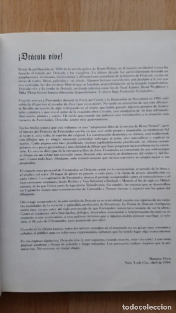 Cómics: DRACULA. FERNANDO FERNANDEZ. GLENAT - Foto 4 - 252499680