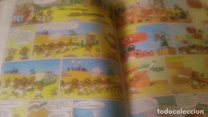 Cómics: une aventure d´asterix le gauliois asterix et cleopatra ,dargaud 1995 - Foto 6 - 84542452