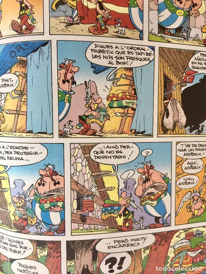 Cómics: Asterix la rosa i lespasa primera edición 1991 catalán catala obelix buen estado - Foto 10 - 99284111