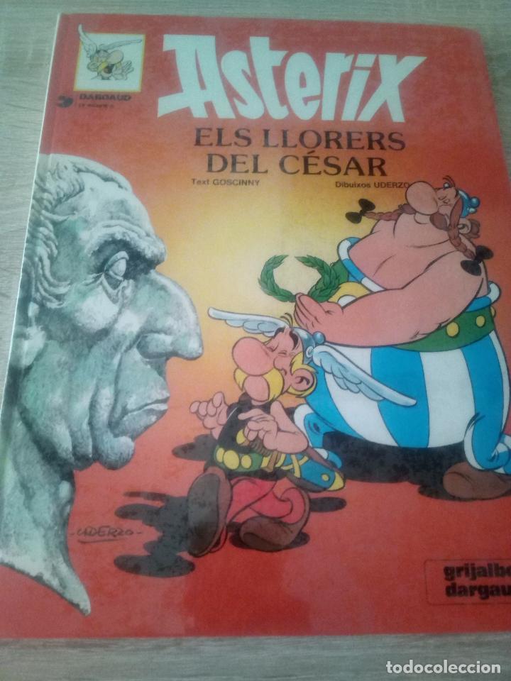 ASTÉRIX - ELS LLORERS DEL CÉSAR - EN CATALÁN - EDITORIAL GRIJALBO 1981 (Tebeos y Comics - Grijalbo - Asterix)