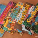Cómics: GARFIELD JUNIOR NºS 3 4 7 8 9 - A COLOR - MUY BUEN ESTADO - TAMBIÉN SUELTOS. Lote 150096430