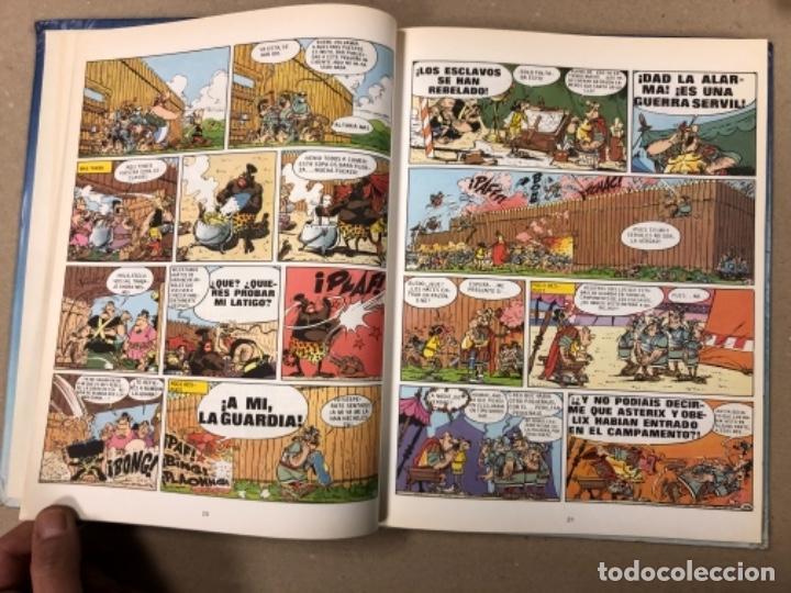 Cómics: LAS AVENTURAS DE ASTERIX (7 PRIMEROS TOMOS CON 4 NÚMEROS CADA UNO). ED. GRIJALBO/DARGAUD 1980-1983. - Foto 30 - 154492610