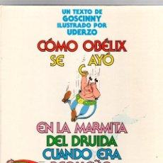 Cómics: ASTERIX. COMO OBELIX SE CAYO EN LA MARMITA DEL DRUIDA CUANDO ERA PEQUEÑO. GRIJALBO, 1889. Lote 195390785