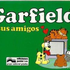 Cómics: GARFIELD Nº 15 - GARFIELD Y SUS AMIGOS - EDICIONES JUNIOR 1995- BIEN. Lote 212329615