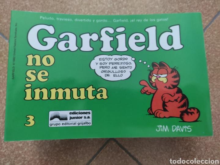 LOTE ONCE NÚMEROS GARFIELD. GRIJALBO. JUNIOR (Tebeos y Comics - Grijalbo - Otros)